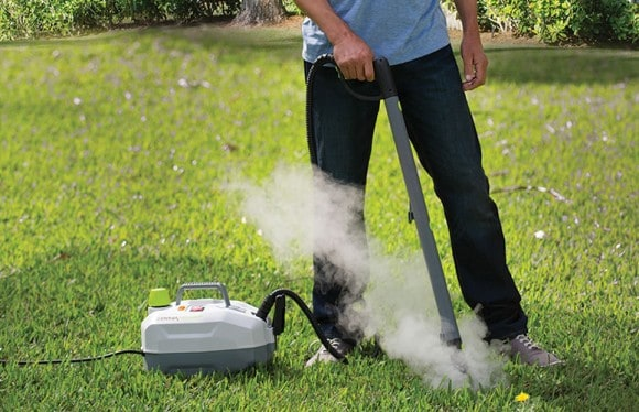 Post image for Kill Annoying Weeds With Steam – DynaSteam